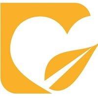Arizona Youth Partnership
