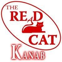 The REaD Cat Bookstore