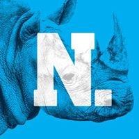 NKDC Design + Strategy