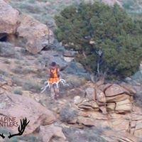 Alpine Antlers LLC