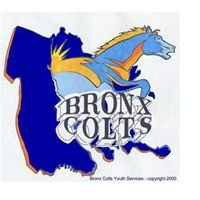 Bronx Colts Youth Foundation