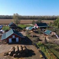 FISCHER FARMS (PUMPKIN PATCH & CORN MAZE)