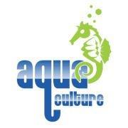 Aqua Culture Swim School