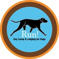 Run! Day Camp For Dogs