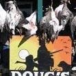 Doug's Hunting Lodge