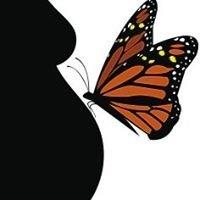 Monarch Midwifery