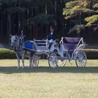 Bull City Carriage and Limousine Service