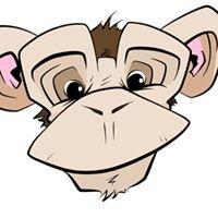 Market Monkeys