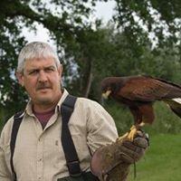 Owl and Falconry Centre