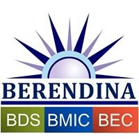 Berendina