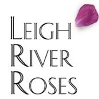 Leigh River Roses