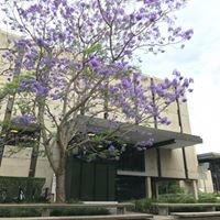 Fryer Library - Duhig Building, UQ