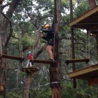 Enchanted Adventure Garden/tree Surfing