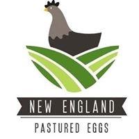 New England Pastured Eggs