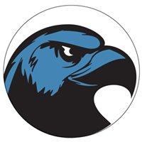 Hawk IT Services