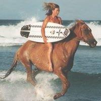 Seahorses Riding Center Byron Bay