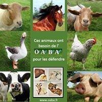 O.A.B.A. - Oeuvre d'Assistance aux Bêtes d'Abattoirs