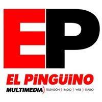 Diario El Pingüino
