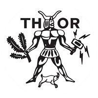 e.t.s.v. Thor