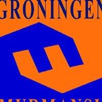 Stichting Stedenband Groningen-Moermansk