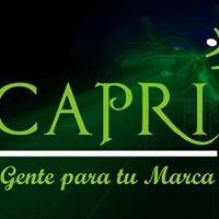 CAPRI btl