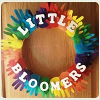 Little Bloomers Daycare and Christian Learning Home