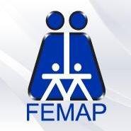 FEMAP