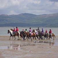 David Davies Hunt Riding Club