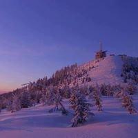 Lysá hora (Moravskoslezské Beskydy)