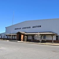 Amarillo Livestock Auction