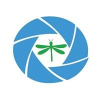 Dragonfly Drone Services