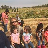 Honey Tree Family Childcare and Preschool
