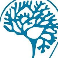 CEREBRUM o.s. Sdružení osob po poranění mozku a jejich rodin