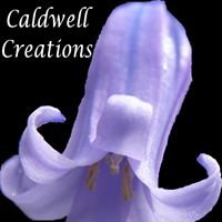 Forest of Dean Calendars, Gifts and Photos - Caldwell Creations