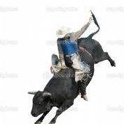 J&J Bull Bash