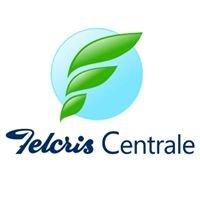 Felcris Centrale