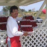 Bob & Gary's Field Fresh Berries
