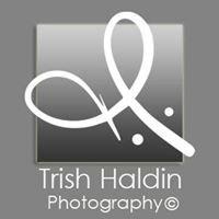 trish haldin photography