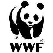 WWF Venezia