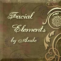 Facial Elements by Ande