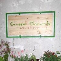 Green Thumb Pop-Up Nursery