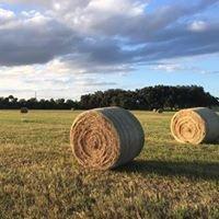 Meloy Hay Company, Inc