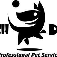 Beach Dog Pet Services