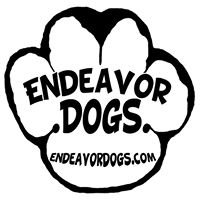 Endeavor Dogs
