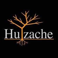 Huizache Mx
