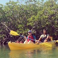 Virgin Islands Ecotours - Mangrove Kayak, Hike & Snorkel Adventure