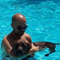 Bill Dion Dog Training and Behavior