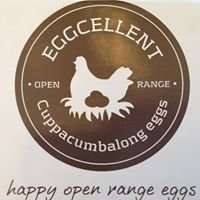 Cuppacumbalong Open Range Eggs