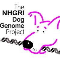 Dog Genome Project at NIH