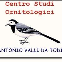 """Centro Studi Ornitologici  """"Antonio Valli da Todi"""""""